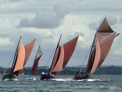 Plusieurs coquilliers en flotte dont la Bergère de Domrémy—Photo Raymond Brélivet