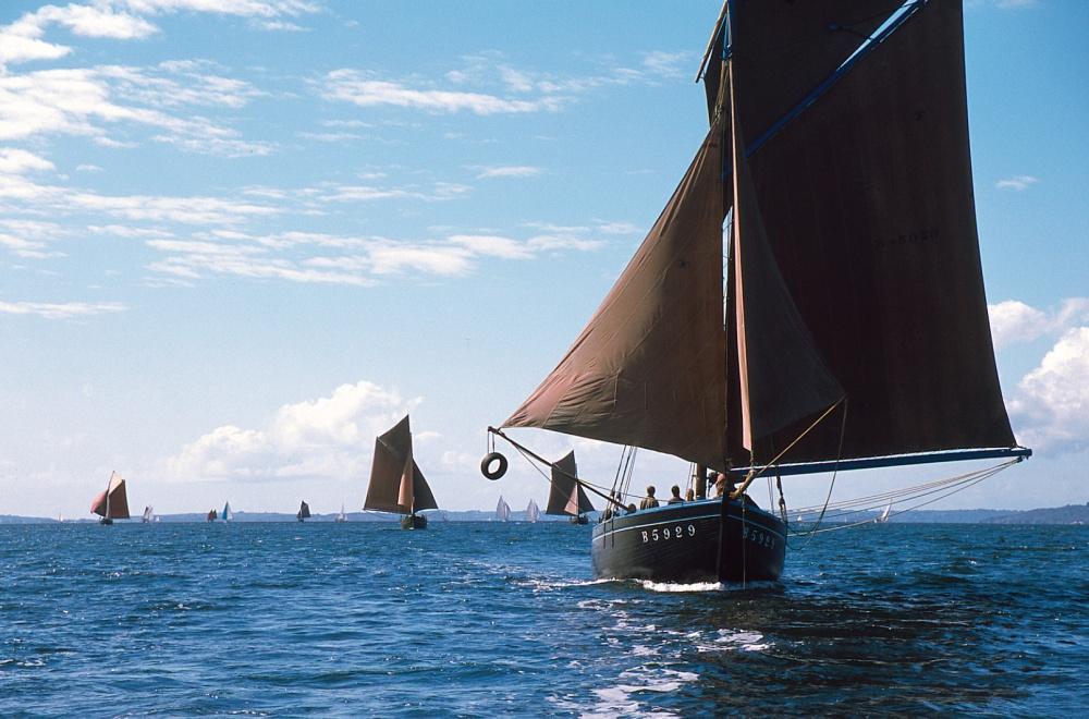 La Bergère de Domrémy, au vent arrière, avec la trinquette tangonée, suivie par d'autres coquilliers